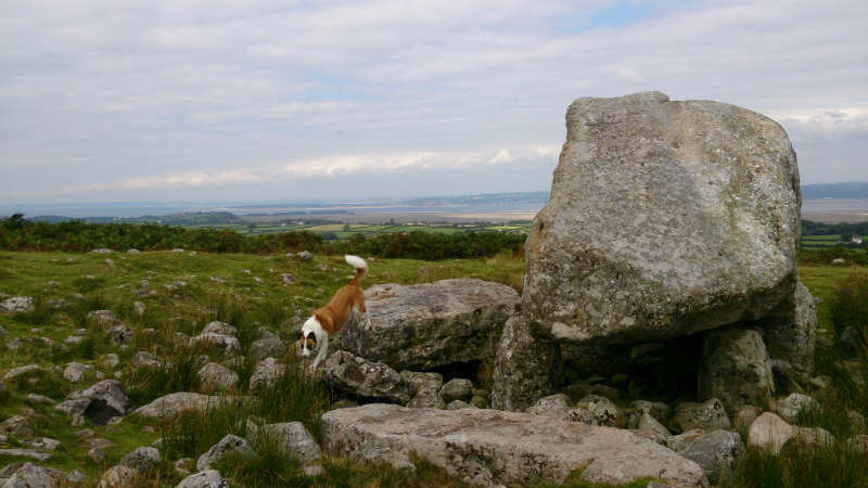 rthur's Stone, a Neolithic burial site at Cefn Bryn. Hope Cally didn't find any bones!