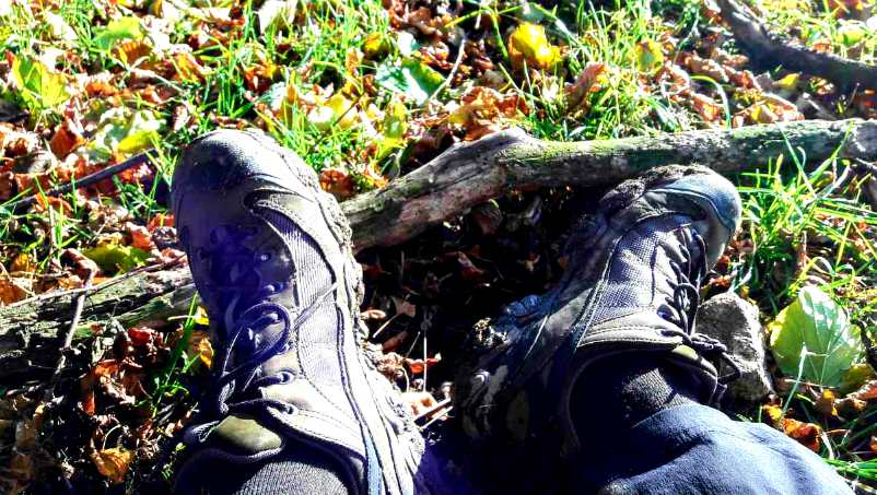 Oboz Firebrand II shoes Derbyshire