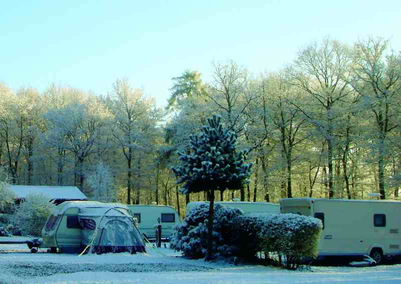 Somers Wood Caravan Park in snow