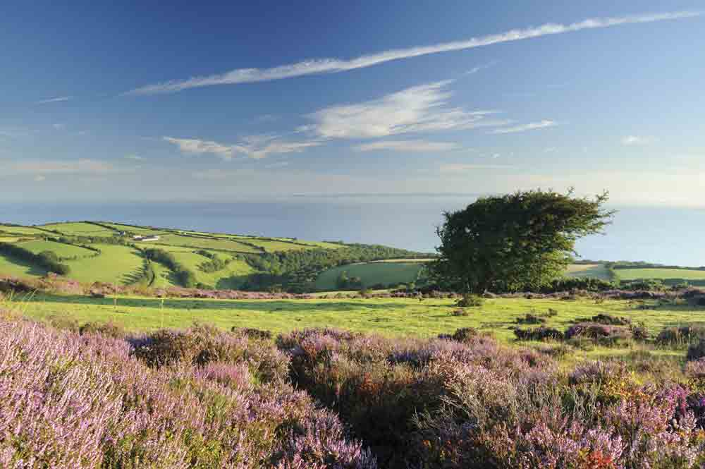 Image of the countryside in Porlock, Somerset