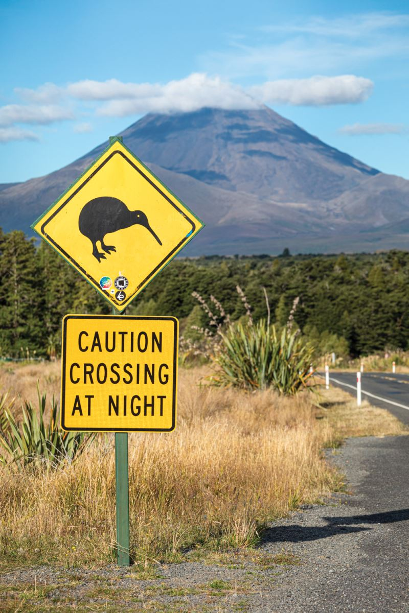 Kiwi warning sign on the road to Tongariro National Park with Mount Ngauruhoe in the distance